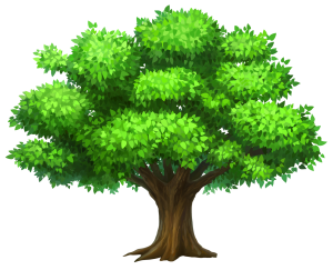 Oack_Tree_PNG_Clipart_Picture